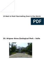 Rank the 10 Best and Most Fascinating Zoos in the World