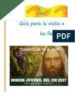 Guía de Visita a Flias (Misión Juvenil CM 2017)