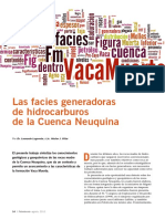 facies.pdf