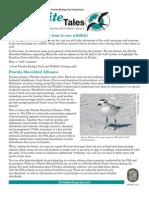 Summer 2010 Kite Tales Newsletter Great Florida Birding Trail