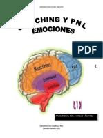 Carlos Alvarez - Coaching, PNL Emociones Febrero 2015