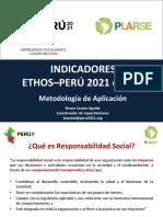 aplicación indicadores ethos - perú 2021 - bruno carpio.pdf