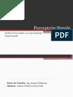 Perceptrn Simple Redesneuronales Conaprendizaj Esupervisado