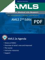 AMLS_Webinar.pdf