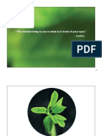 Moringa Presentation (General) print.pdf