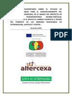 Estudio BIOGAS.pdf