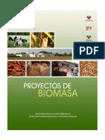 guiabiomasaeia.pdf