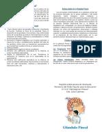 triptico de Biologiaç.docx