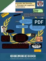 Infografia Derecho Administrativo Flor m