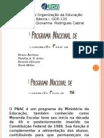 PNAE + CAE + Agricultura Familiar 2