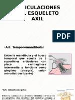 Articulaciones Del Esqueleto Axil