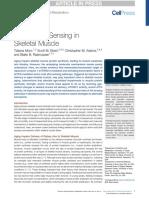 Amino Acid Sensing in Skeletal Muscle Leucine.pdf