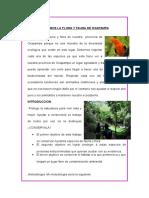 Cuidemos La Flora y Fauna de Oxapampa - Anthony