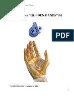 """Business Plan """"GOLDEN HANDS"""" ltd"""