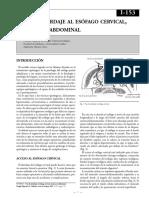 Vias de Abordaje Esofagico.pdf