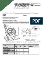 Exa6ToGradoB3-2016.docx