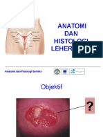 4.Anatomi Dan Histologi Serviks Edit