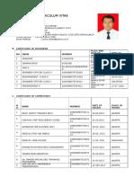 CV Yulius Desse