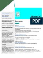 31 01 217 nieuwsbrief de Feniks.pdf