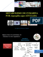 Metabolismo de Cumarina Por Aspergillus niger ATCC 11394