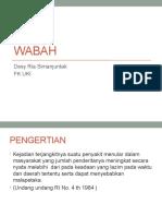 (3 Jan 2017) Dr. Desy - Wabah