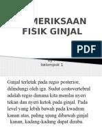PEMERIKSAAN FISIK GINJAL