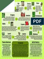 Plantas Medicinales yeneika