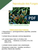 Fisiologia e Reprodução Dos Fungos Aula 3 Micro Geral Odonto
