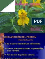 Declaraciondelperdon