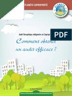 Guide Comment Audit Efficace