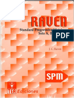 Standart Progressives Matrices.pdf