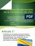 principiosfundamentalesdelaconstitucion