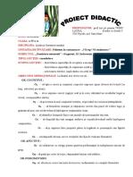 romanagrad.i.doc