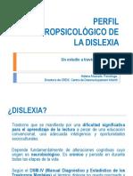 Dislexia. Palma 2010