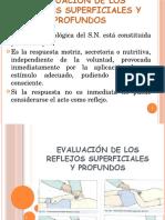 Evaluacion de Los Reflejos1