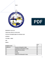 Documento-618.pdf