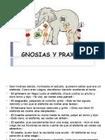 1 Gnosias y Praxias - Copia