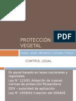 Protección Vegetal