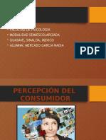 Percepcion Del Consumidor