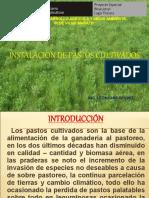 Instalacion de Alfalfa y Su Manejo