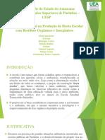 Educacao Ambiental Na Producao de Horta Escolar Com Residuos Organicos e Inorganicos Pedro Campelo de Assis Junior
