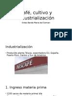 Café Cultivo y Industrialización