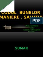 Codul Bunelor Maniere- Salutul
