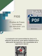 F.I.S.G.pdf