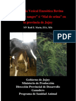 121-Folleto-HEMATURIA.doc.pdf