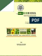 Tugas 1 Biodiesel, Murliadi Palham