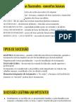 Direito Romano Das Sucessoes Slides