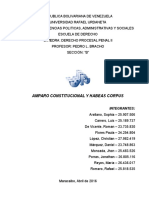Amparo Constitucional y Habeas Corpus (Final)