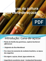 25863-cana.pdf