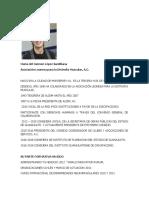 CV Carmen Lopez Santillana
